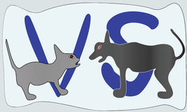 Cat Versus Dog. Vector illustration cats versus dogs are hostile Stock Photo