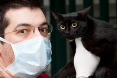 Cat at vet Stock Images