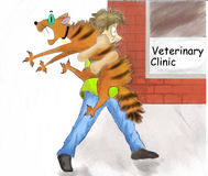 Cat veterinarian Stock Photo