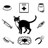 Cat veterinary clinic icons Royalty Free Stock Photo