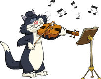 Cat and violin. Cartoon cat playing the violin Stock Images