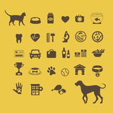 Cat vs dog infographic elements Stock Image