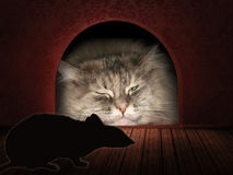 Cat waiting in a mouse hole. Concept graphic. Stock Image