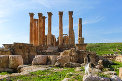 Cat walking on Roman ruins, Jerash Stock Images