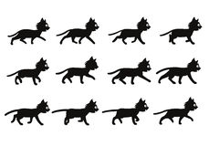 Cat Walking Sprite nera Fotografie Stock Libere da Diritti