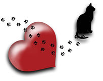 The cat walks all over my heart Royalty Free Stock Image
