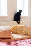 Cat wants the bread Royalty Free Stock Photo