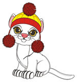 Cat in warm hat. White cat in warm winter hat sit Stock Photography