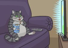 Cat watching TV. Cat sat down on the couch and watching a TV show Royalty Free Stock Photos