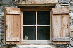 Cat watching from a window Royalty Free Stock Photos