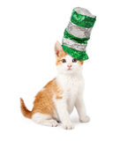 Cat Wearing Sequin St Patricks Day Hat Royalty Free Stock Photo