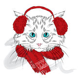 Cat were drawn by hand. Cat vector . Cat in the winter clothes . Stock Image