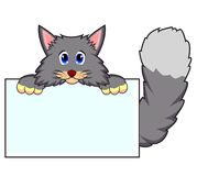 Cat with white board Stock Photo