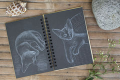 Cat by white chalk on black paper. Black paper notepad on wooden background. Stock Photo
