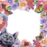 Cat wild animal frame in a watercolor style. Royalty Free Stock Photography