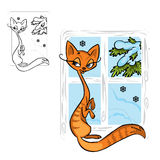 Cat on the window Stock Images