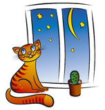 Cat at the window. Illustration of smiling cat at the window Royalty Free Stock Image