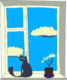 Cat at a window. The cat sits on a window sill, nearby there is a flower, in the cloud sky Stock Image