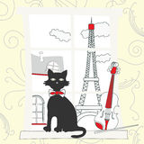 Cat on the window in Paris Royalty Free Stock Images