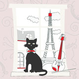 Cat on the window in Paris Stock Photography