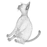 Cat wire model Royalty Free Stock Photo