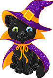 Cat Witch illustration stock