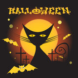 Cat Witch Flat Icon Halloween Immagini Stock