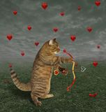 Cat With A Bow Shooting To A Heart Stock Images