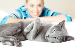 Cat and woman. Cat pampering indoors and defocused smiling woman Stock Photos