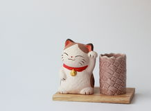 Cat on a wooden stand under pencils. On a white background stock photos