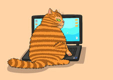 Cat works on the laptop. Royalty Free Stock Photography