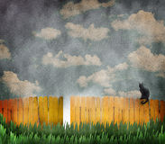 Cat on yellow fence stock images