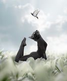 Cat Yoga, a woman connecting to her fierce inner strength and fl Stock Images