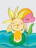 Cat zen. Illustration abstract yoga cat sen sea sun background Stock Images