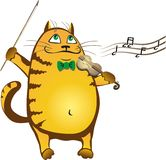 Cat2 Stock Image