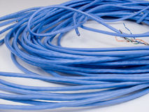 Cat5cable1 Stock Photo