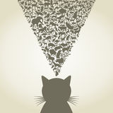 Cat6 Royalty Free Stock Photography