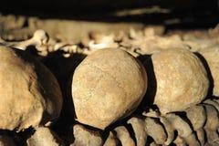 Catacombehechting Stock Fotografie
