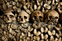 Catacombs. A row of skulls at the catacombs in Paris Stock Photography