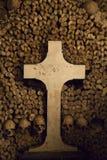 Catacombs of Paris. Stock Photos
