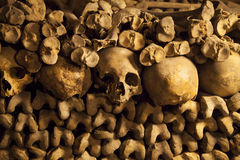 Catacombs of Paris. Stock Images