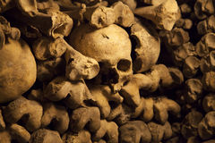Catacombs of Paris. Stock Image