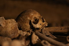 The Catacombs of Paris / skull. The Catacombs of Paris are underground ossuaries in Paris, France, which hold the remains of more than six million people n a Stock Photos