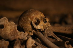 The Catacombs of Paris / skull. The Catacombs of Paris are underground ossuaries in Paris, France, which hold the remains of more than six million people n a Royalty Free Stock Image