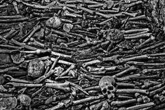 Catacombs Portugal Porto. Cathedral bones skulls B&W Royalty Free Stock Image