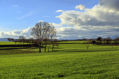 Catalan countryside, early spring. Spain Royalty Free Stock Images