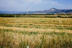 Catalan lan Stock Photography