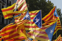 Catalan secessionist flags. Group of Catalan secessionist flags during the demonstration for the independence of Catalonia  on September 11, 2011 in Barcelona Stock Image