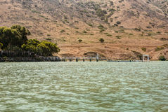 Catalina港口码头 免版税库存图片