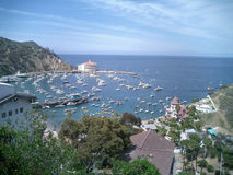Catalina Stock Images